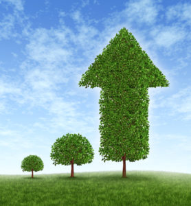 trees growing financial growth concept